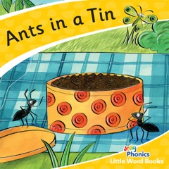 Ants in a Tin