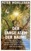 Peter Wohlleben - Der lange Atem der Bäume Grafik