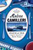 Andrea Camilleri & Stephen Sartarelli - Death at Sea artwork