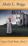 Bride In The Storm Chance Creek Brides Book 3