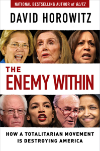 The Enemy Within Book Cover