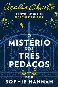 O mistério dos três pedaços Book Cover
