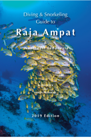 Diving and Snorkeling Guide to Raja Ampat and Northeast Indonesia