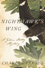 Nighthawk's Wing