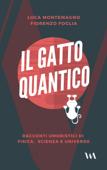 Il gatto quantico
