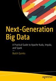 Next Generation Big Data