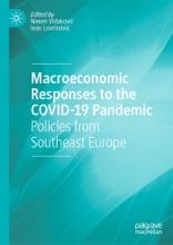 Macroeconomic Responses To The COVID-19 Pandemic