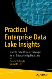 Practical Enterprise Data Lake Insights