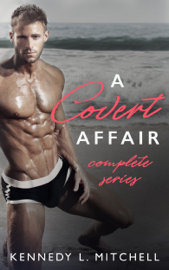 A Covert Affair - Complete Series PDF Download