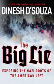 The Big Lie book