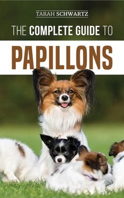 The Complete Guide to Papillons