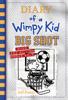 Jeff Kinney - Big Shot (Diary of a Wimpy Kid Book 16)  artwork