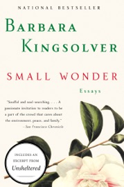 Small Wonder PDF Download