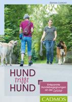 Katrien Lismont - Hund trifft Hund artwork