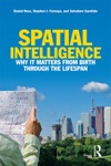 Spatial Intelligence