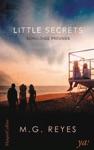 Little Secrets - Schuldige Freunde