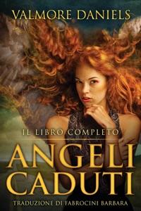 Angeli Caduti, Il Libro Completo Book Cover