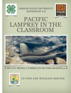 Pacific Lamprey In The Classroom
