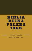 Biblia reina valera 1960 Letra grande Book Cover