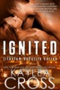 Ignited (Titanium Security Series, #1)