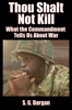 S.G. Dargan - Thou Shalt Not Kill, What the Commandment Tells Us About War  artwork