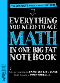 Everything You Need to Ace Math in One Big Fat Notebook book