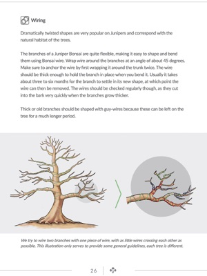 Tremendous Juniper Bonsai Guide In Apple Books Wiring Digital Resources Honesemecshebarightsorg