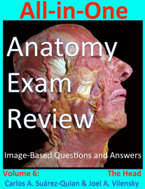 All-in-One  Anatomy  Exam Review