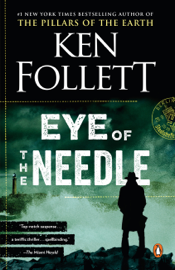 Eye of the Needle book reviews