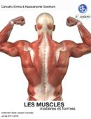 TPE                    Les Muscles