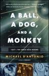 A Ball A Dog And A Monkey