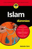 Islam voor Dummies
