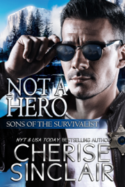 Not a Hero book