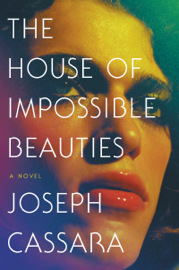 The House of Impossible Beauties book