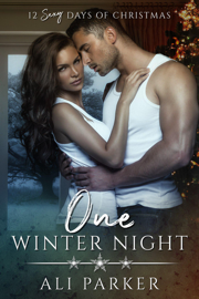 One Winter Night - Ali Parker book summary