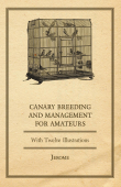 Canary Breeding and Management for Amateurs with Twelve Illustrations