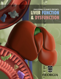 Liver Function & Dysfunction book