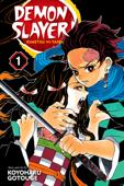 Demon Slayer: Kimetsu no Yaiba, Vol. 1 Book Cover