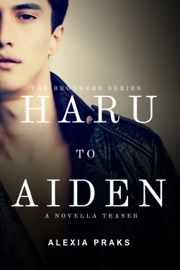 Haru to Aiden: A Novella Teaser PDF Download