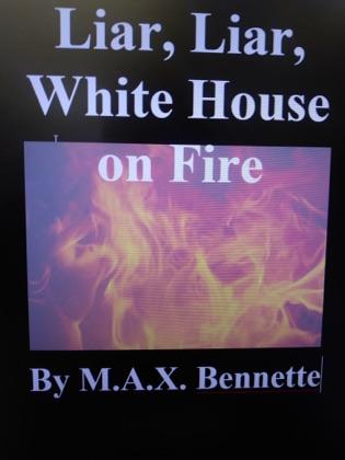 Liar, Liar, White House on Fire image