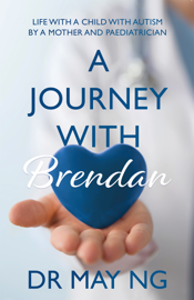 A Journey with Brendan book