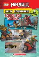 School For Crooks (LEGO Ninjago: Brick Adventures)