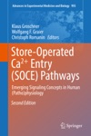 Store-Operated Ca Entry SOCE Pathways