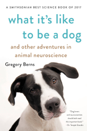 What It's Like to Be a Dog book