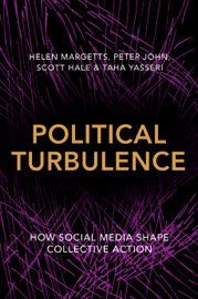 Political Turbulence book