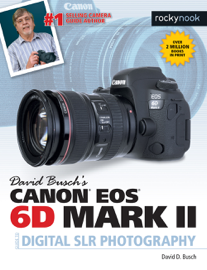 David Busch's Canon EOS 6D Mark II Guide to Digital SLR Photography