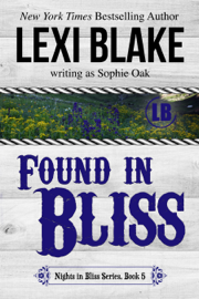 Found in Bliss, Nights in Bliss, Colorado, Book 5 book