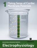 Making Sense of Cardiac Membrane Potentials
