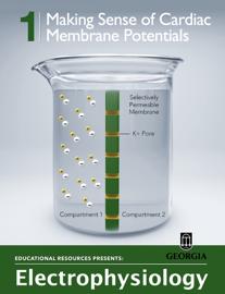 Making Sense of Cardiac Membrane Potentials book