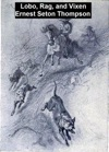 Lobo Rag And Vixen